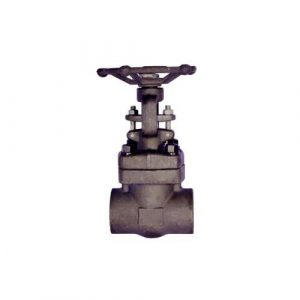 Forged Steel Gate Valve A105 Class 800